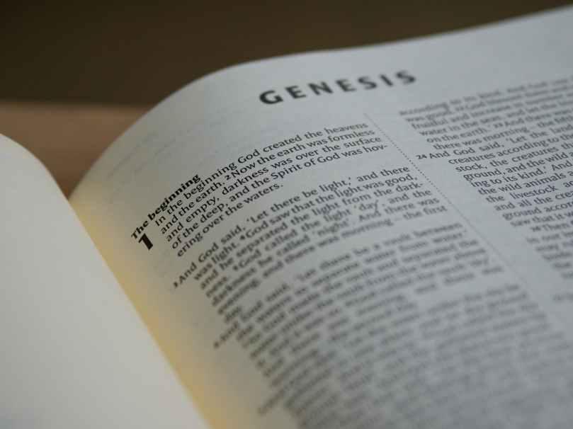 close up photo of bible